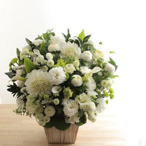 <span>供花・お悔み・お供え</span>お悔みや法要に送る花